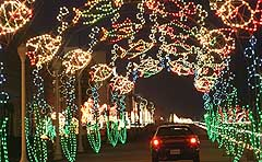 holiday lights at the beach boardwalk christmas